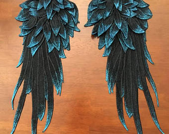 Cosplay wings.