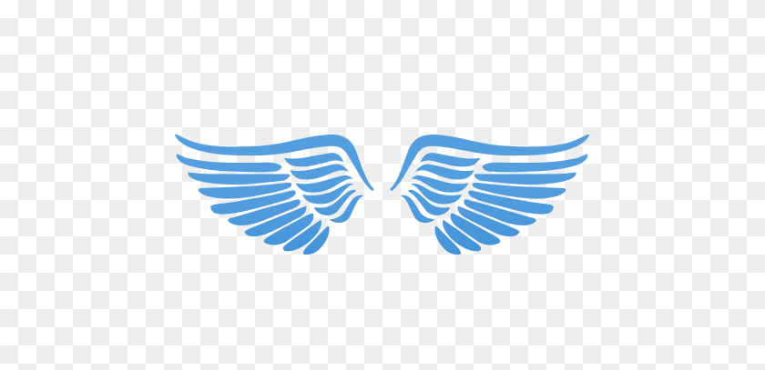 Angel Wings Icon Png Png Image.