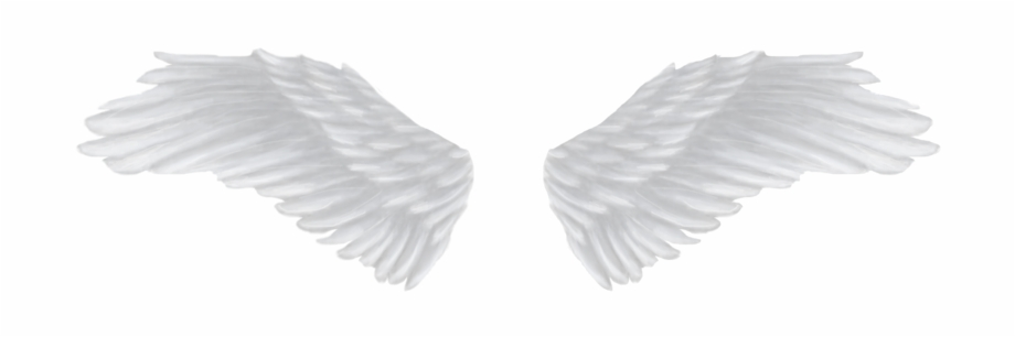 White Angel Wings Png Image Background.