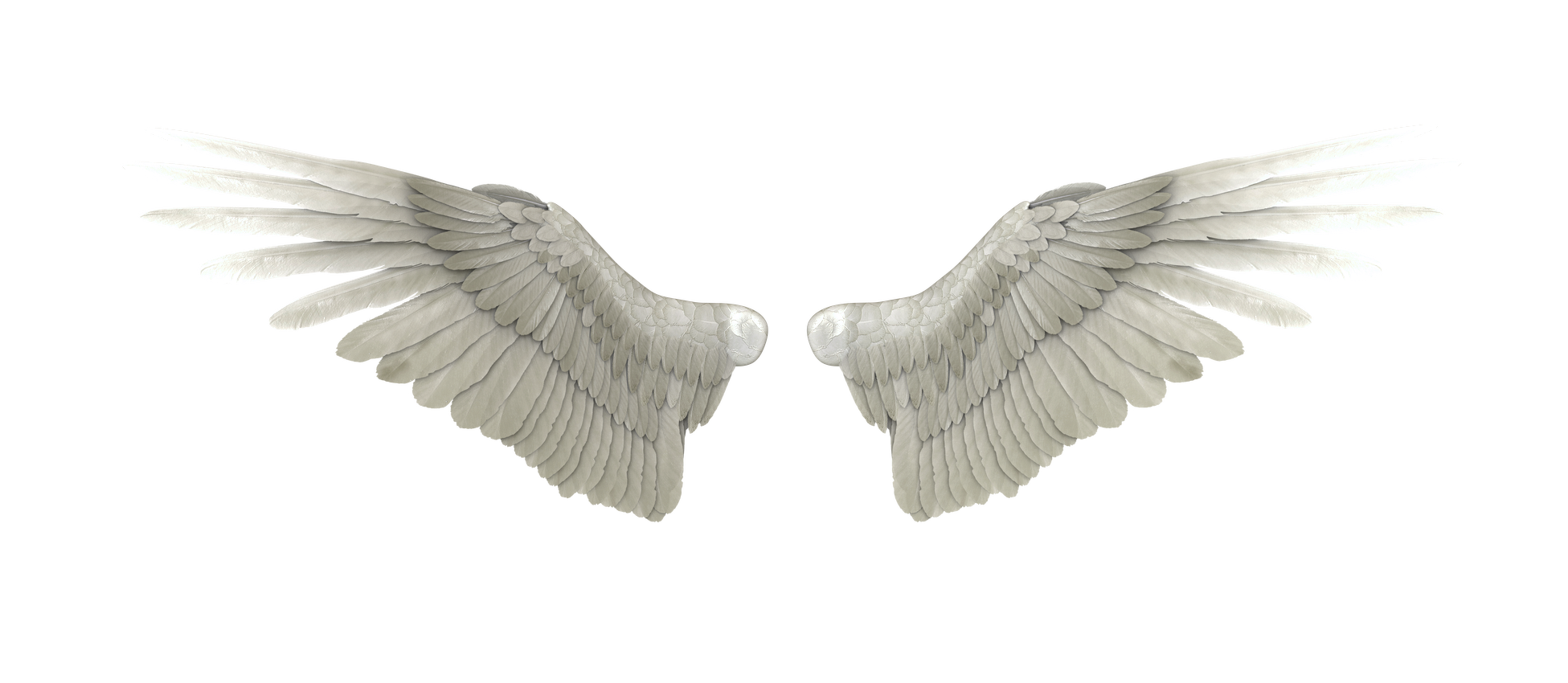 DeviantArt Angel Heaven.