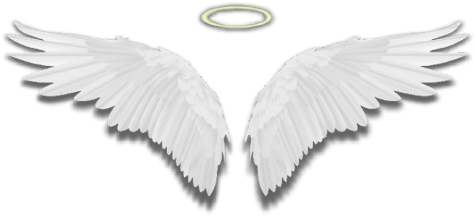 Free collection of Angel wings and halo png. Download transparent.