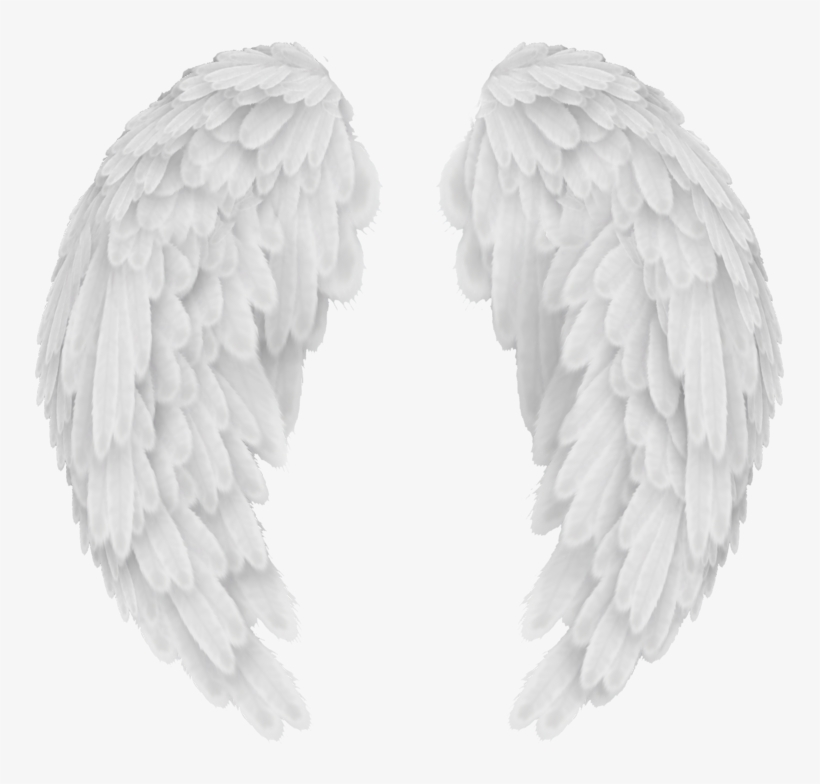 White Wings Png Picture.