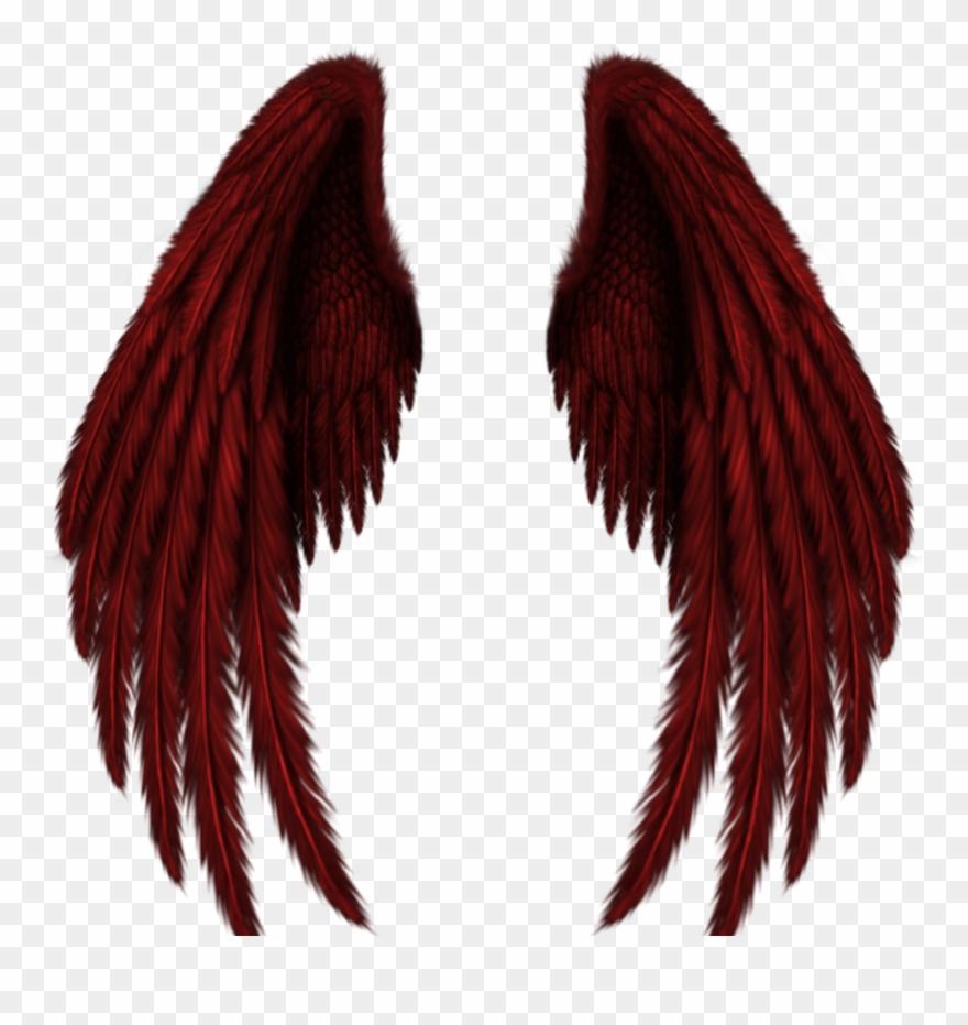 Wings Sticker.