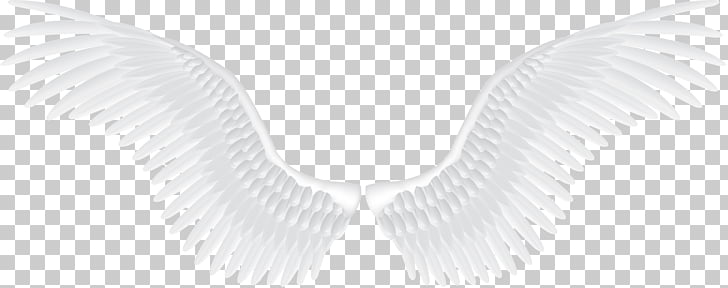 9,286 angel Wings PNG cliparts for free download.