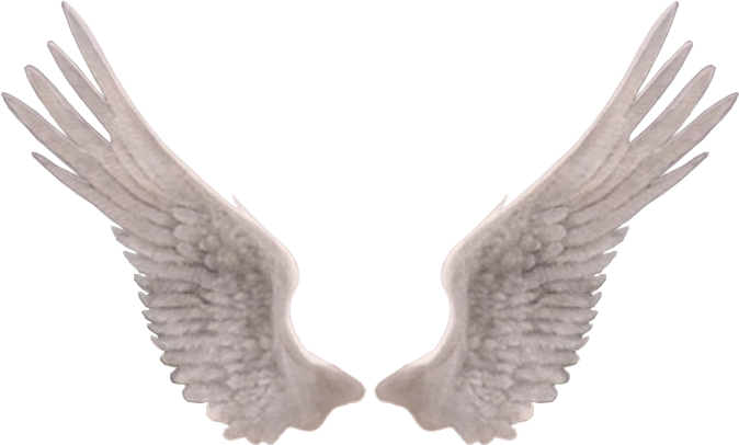 angel wings png edit photography FreeToEdit.