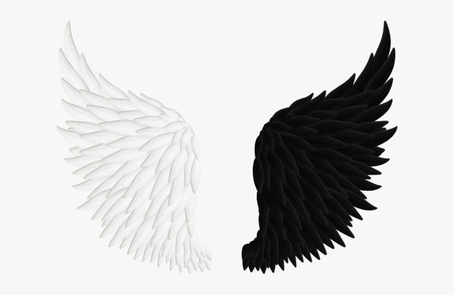 Realistic Angel Wings Png.