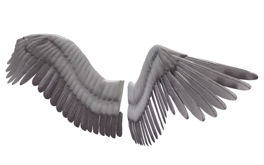 Free Angel Wings Png Tumblr, Download Free Clip Art, Free.
