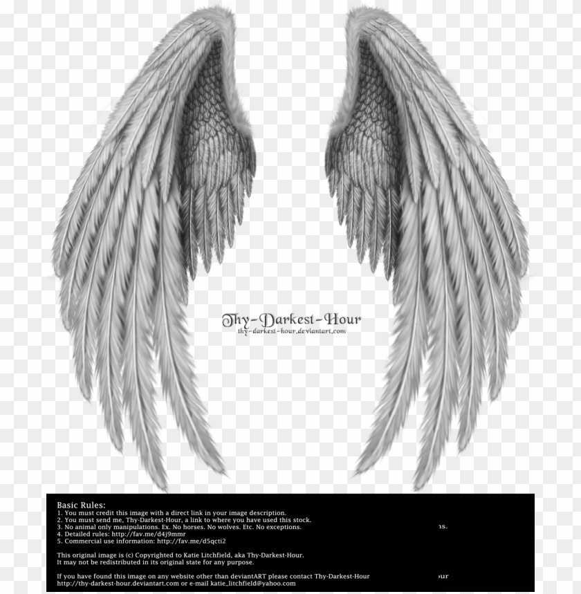 realistic angel wings side view download.