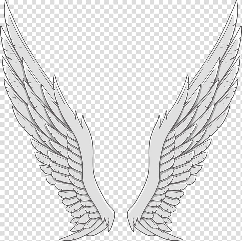 Angel wing White, Silver angel wings transparent background.