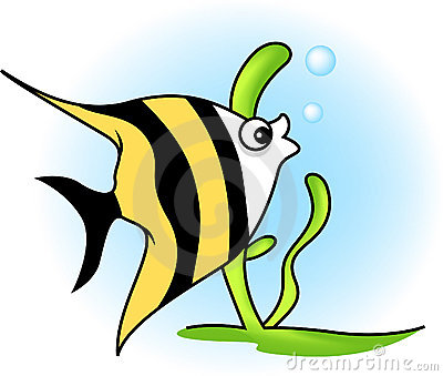 Angel Fish Stock Illustrations.