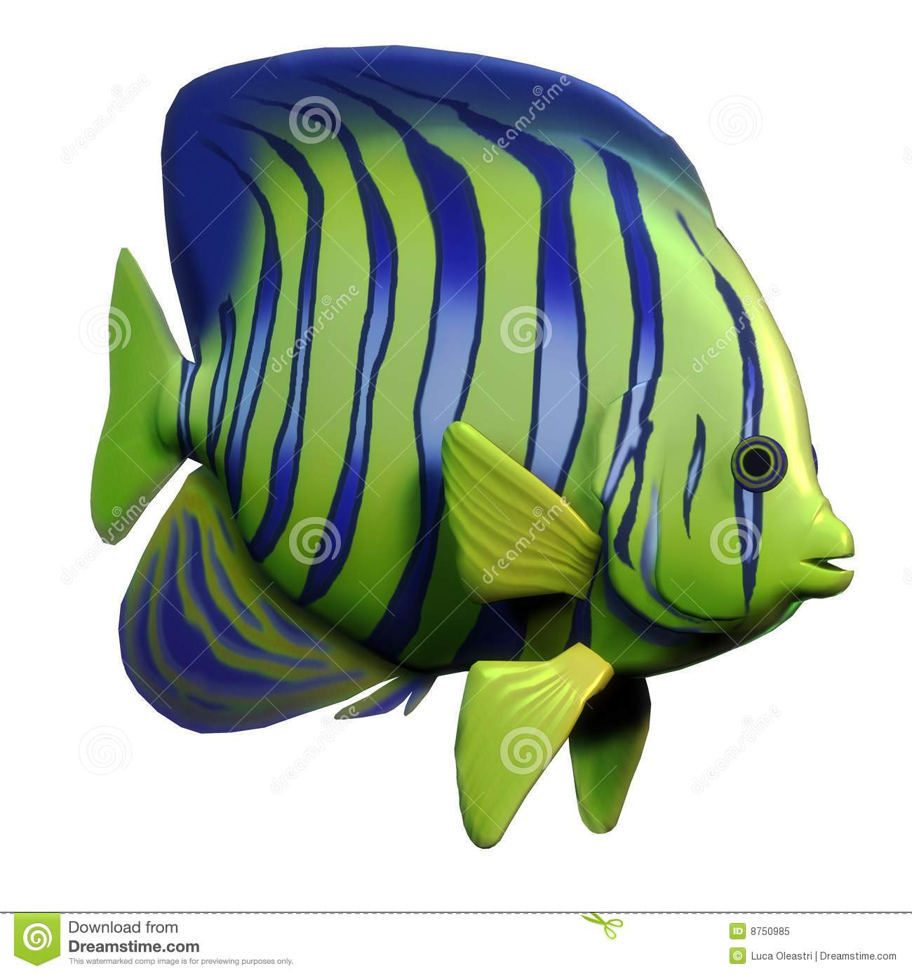 Angelfish Stock Illustrations.