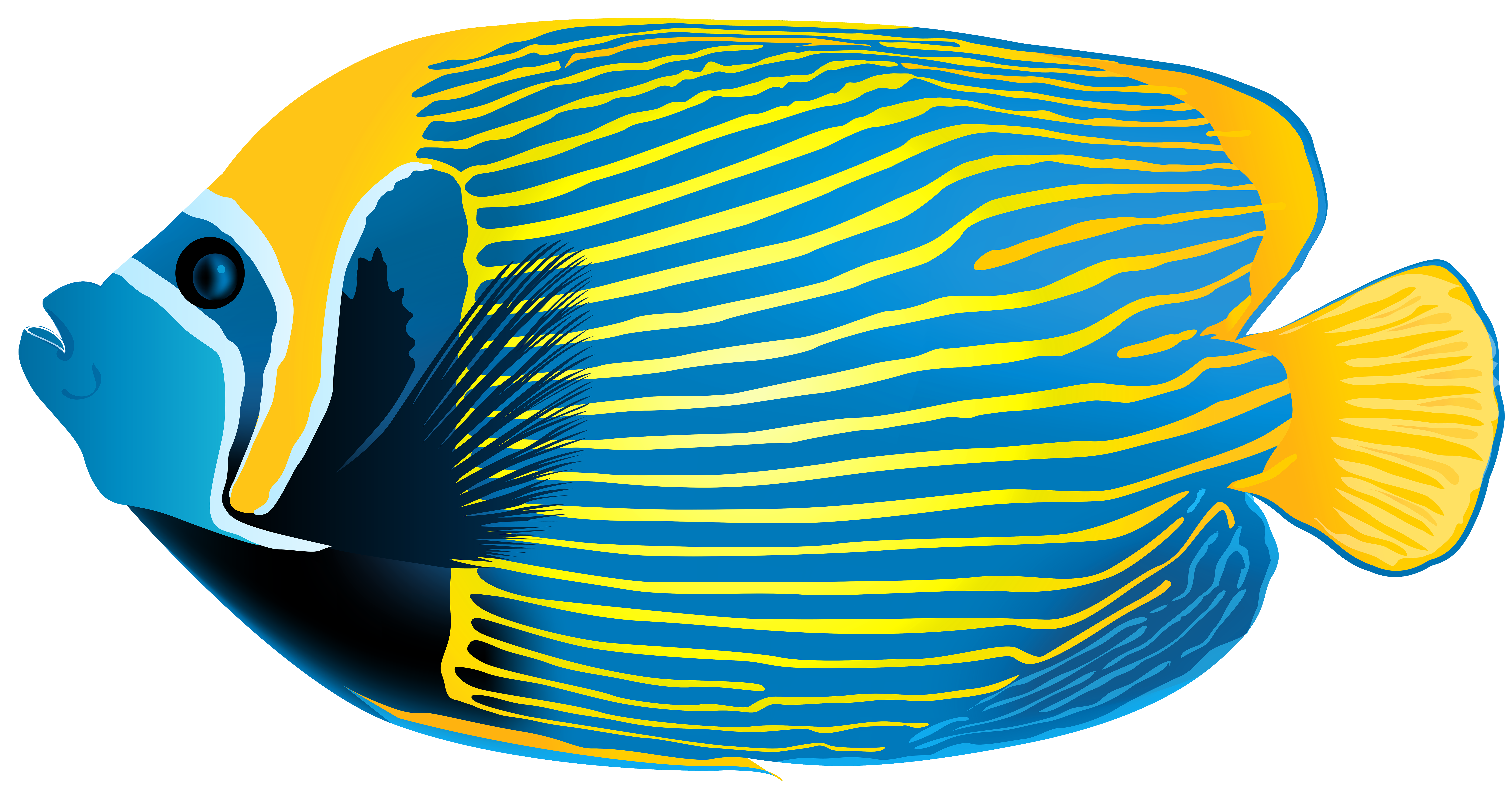 angelfish clipart clipground Angelfish Outline angel fish clip art free