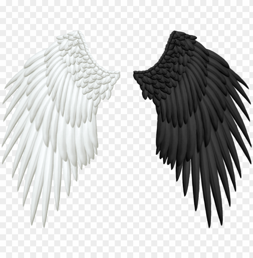 half wings png transparent.