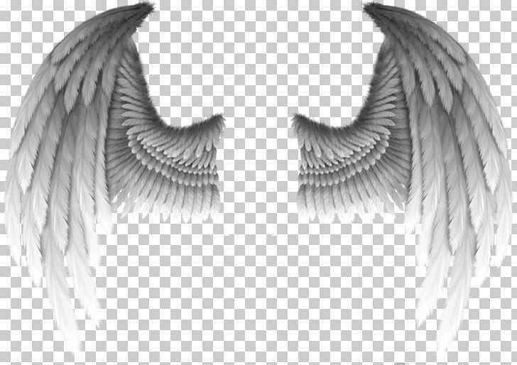 Fallen angel Devil Wing Demon, Devil\'s wings, white wings.