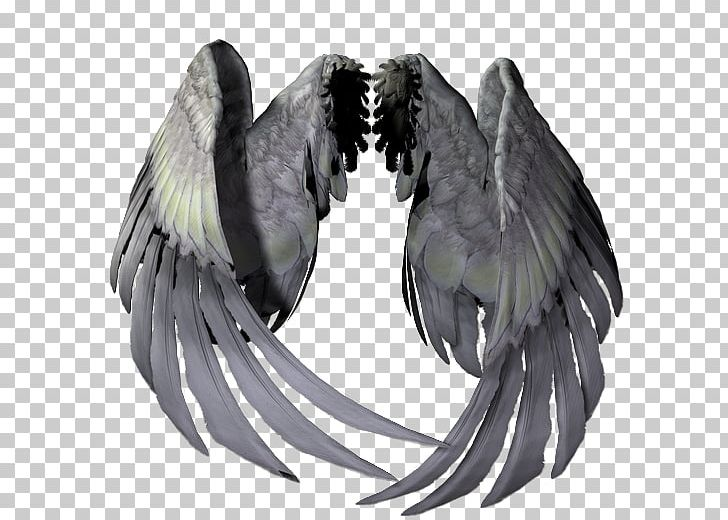Portable Network Graphics Adobe Photoshop Angel GIF PNG, Clipart.