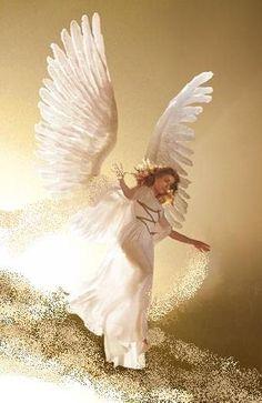49 Best angel clipart images.