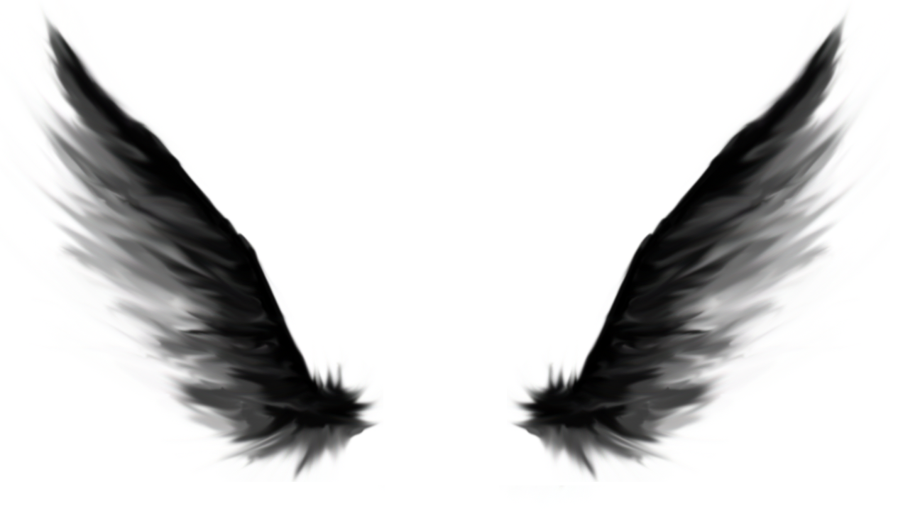 Download White Angel Wings Png () png images.