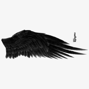 Angel Wings Icon Png #2224968.