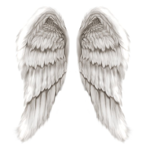 Free Angel Wings Png, Download Free Clip Art, Free Clip Art on.