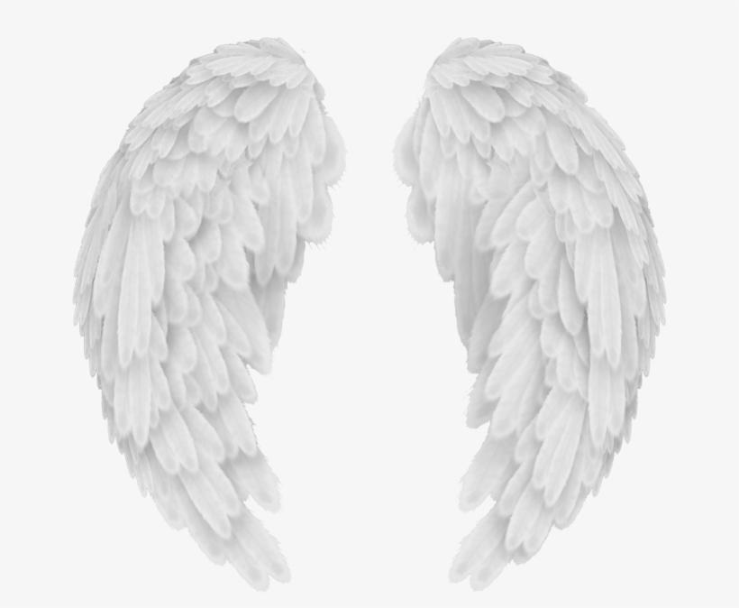 Angels In America Wings.