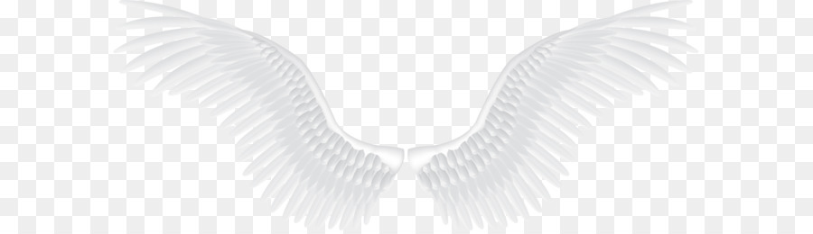 Angel Wings Png (105+ images in Collection) Page 3.