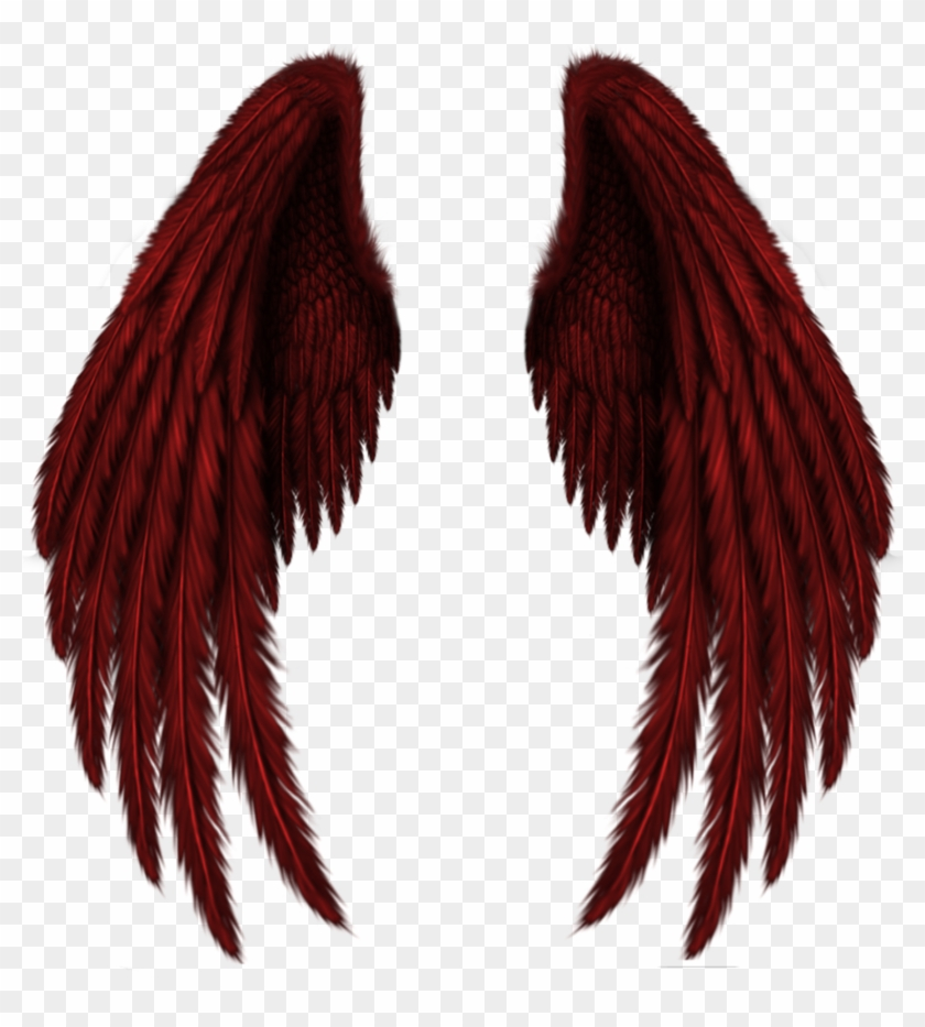 Wing Images Png.