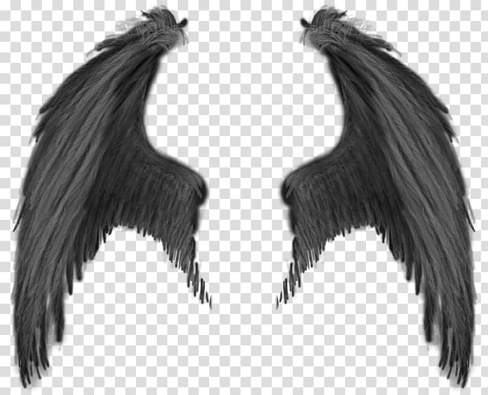 Angels transparent background PNG cliparts free download.