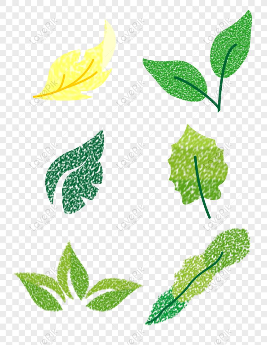 Gratis daun tanaman yang digambar tangan elemen komersial.