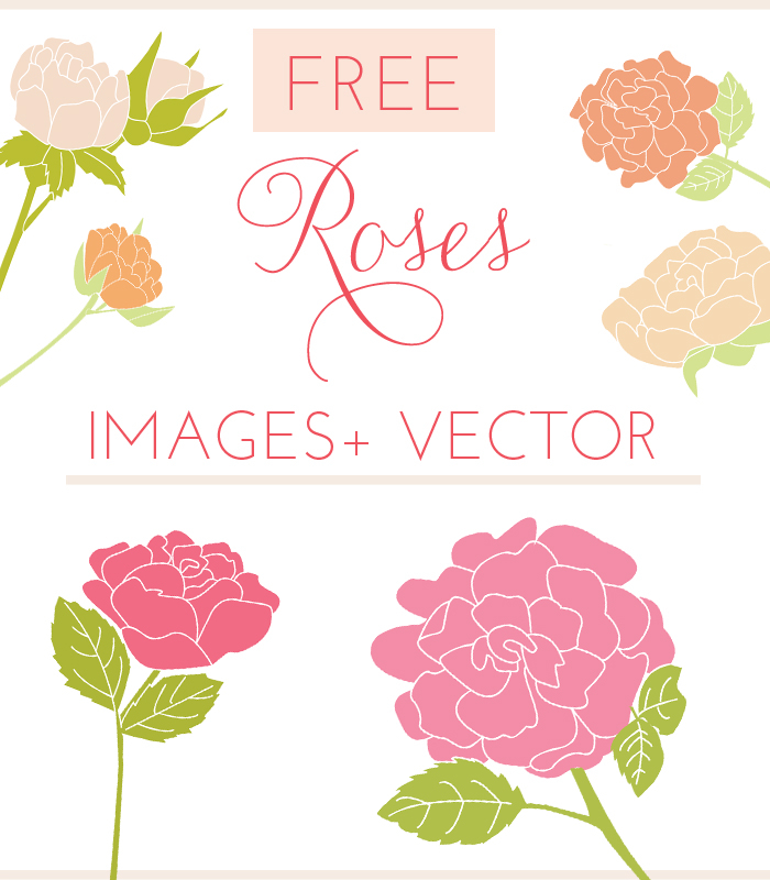 Free Rose Vector Clip Art & Rose Images.
