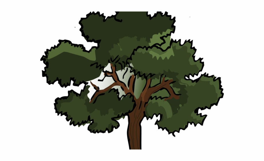 Tree Cartoon Png Angle Of Elevation And Depression.