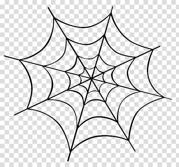 Spider web illustration, Spider web , Halloween Spider.