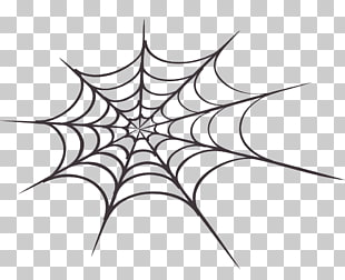 Spider web Free content , Spider Web s PNG clipart.