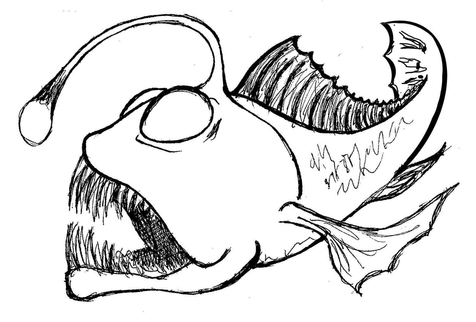 The best free Anglerfish drawing images. Download from 13.