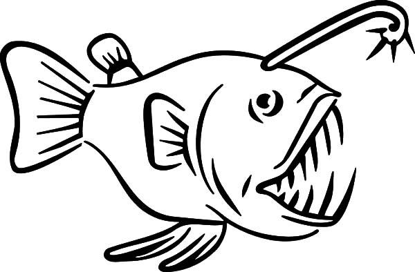 Viperfish Drawing.