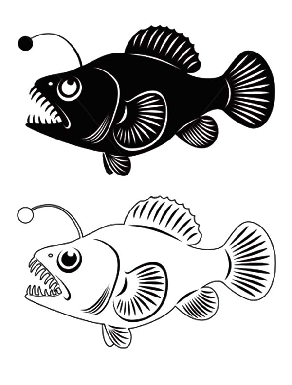 Angler Fish Clip Art Coloring Pages : Best Place to Color.