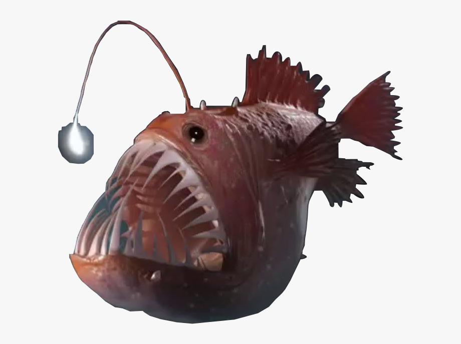 Angler Fish Png 8 » Png Image.