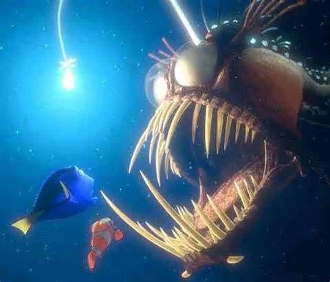 Angler Fish.