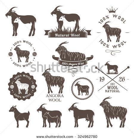 Cashmere Goat Stock Photos, Royalty.
