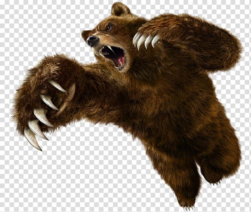 Tekken 5 Tekken 6: Bloodline Rebellion Angry Bear, bear.