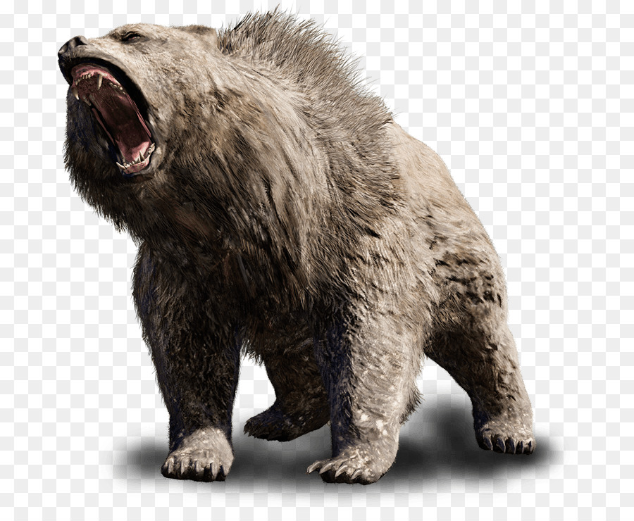 Bear Cartoon.