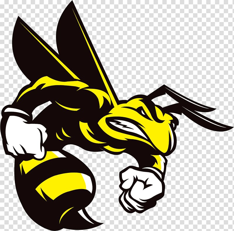 Black and yellow hornet illustration, Honey bee Hornet.