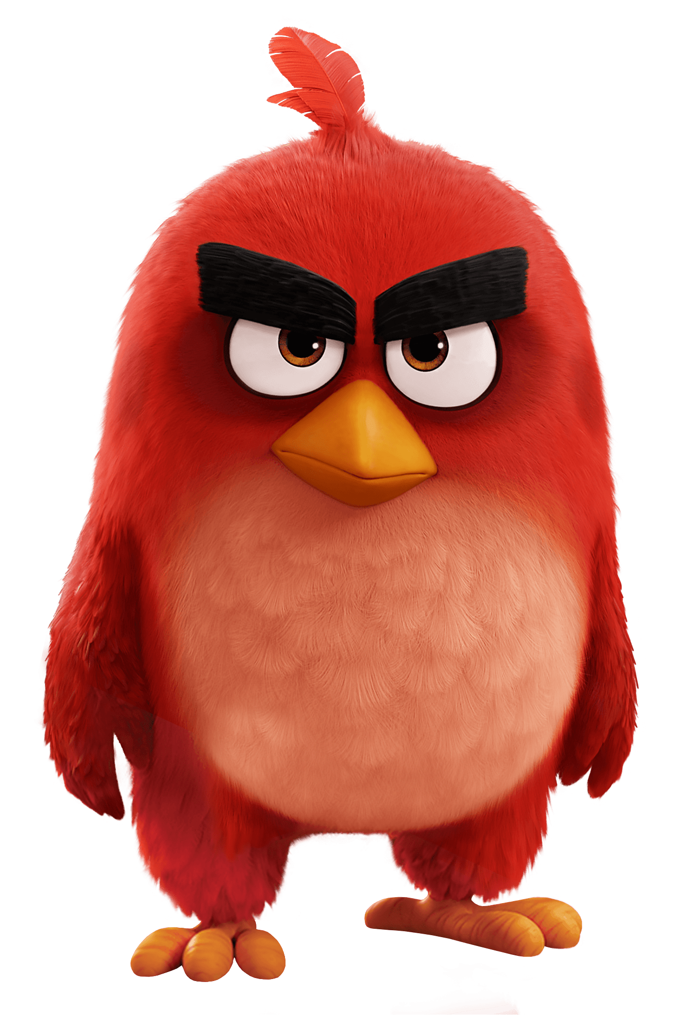 Angry Birds Movie Red Bird transparent PNG.