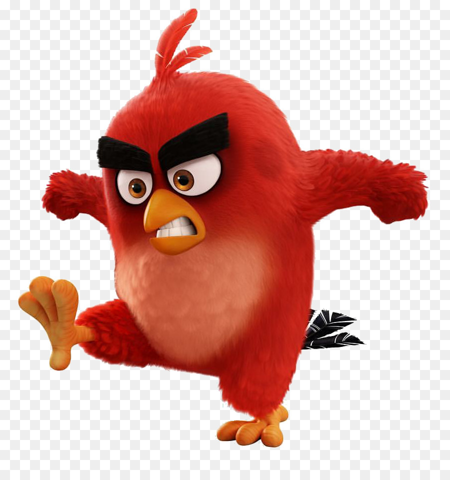 Angry Bird png download.