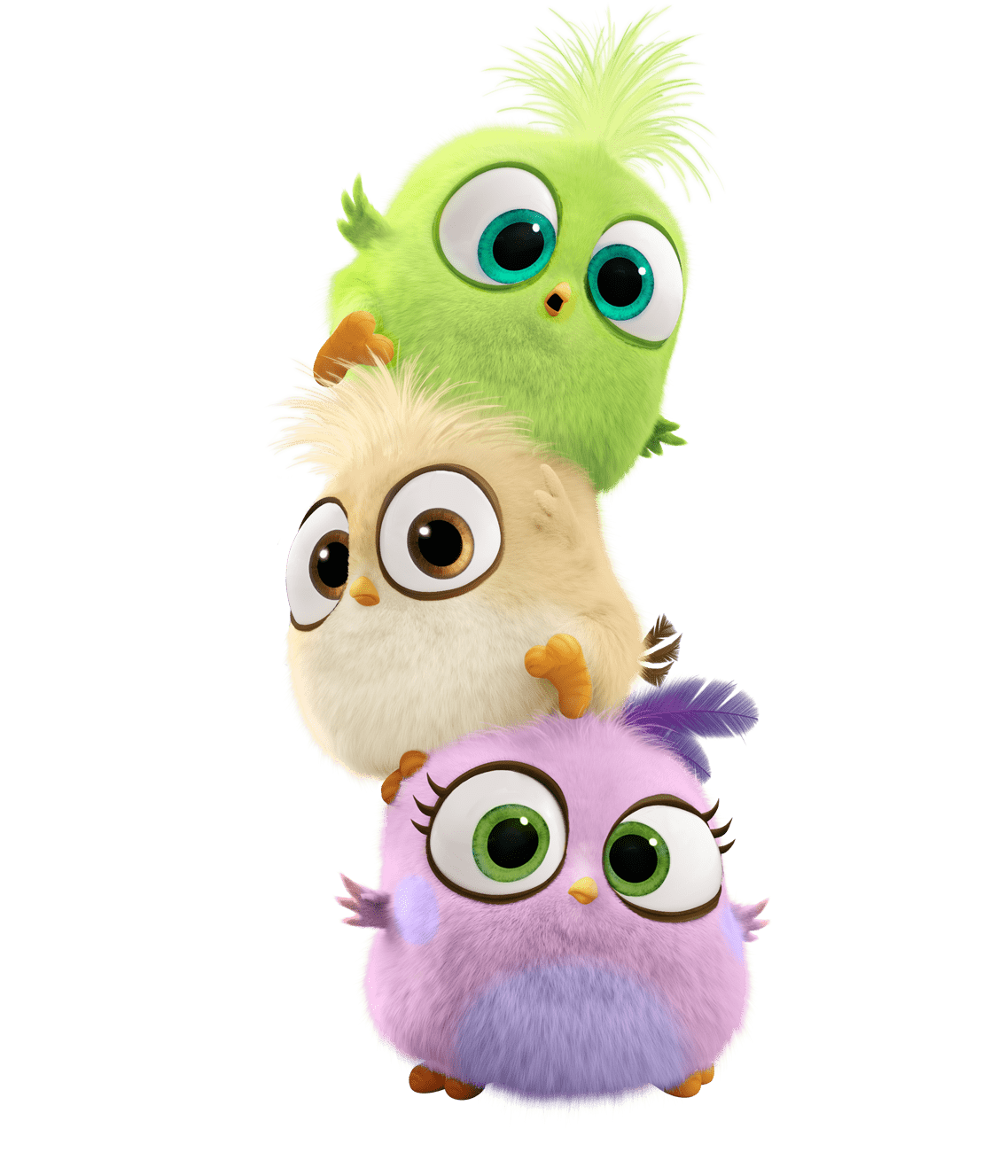 Angry Birds Movie transparent PNG.