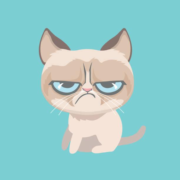 Best Grumpy Cat Illustrations, Royalty.