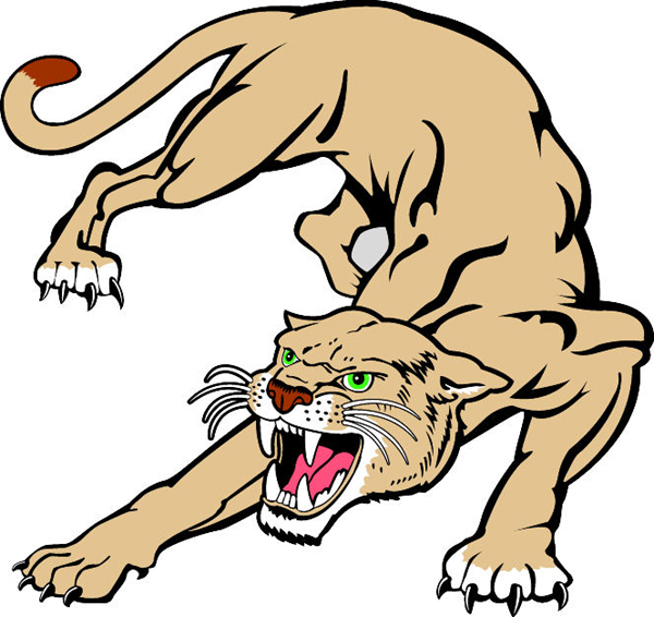 Cougar clipart cartoon, Cougar cartoon Transparent FREE for.