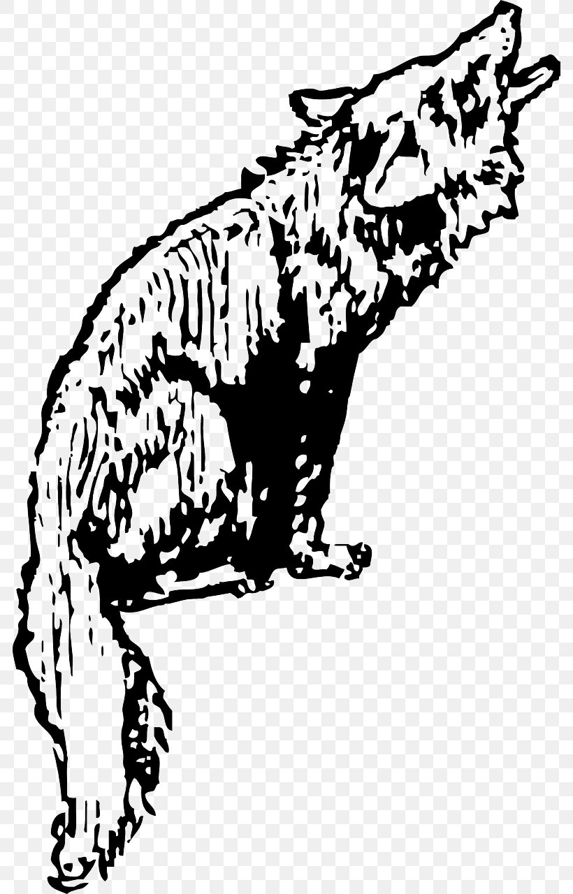 Coyote Gray Wolf Clip Art, PNG, 784x1280px, Coyote, Art, Big.