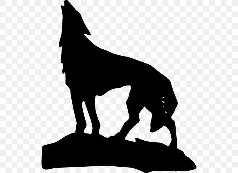 Gray Wolf Coyote Lion Clip Art, PNG, 534x599px, Gray Wolf.
