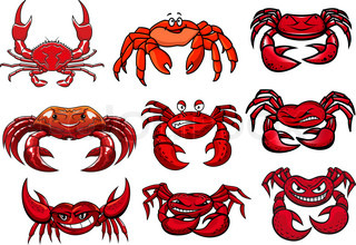Angry red crab in cartoon style isolated on white background.