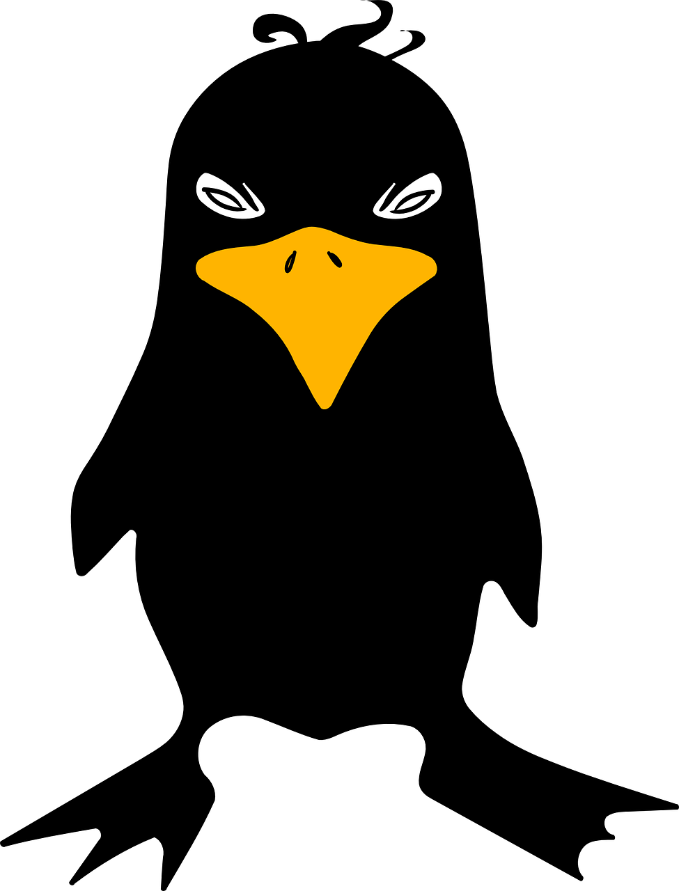 Raven Crow Angry Bird Black PNG.